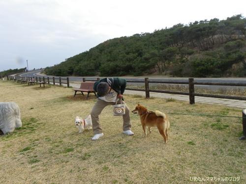 2013 鹿島灘海浜公園 022