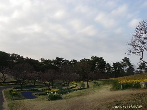 2013 海浜公園散歩(3月) 039