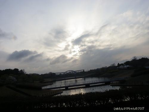 2013 海浜公園散歩(3月) 040