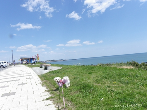 2013 うみ散歩♪ 012