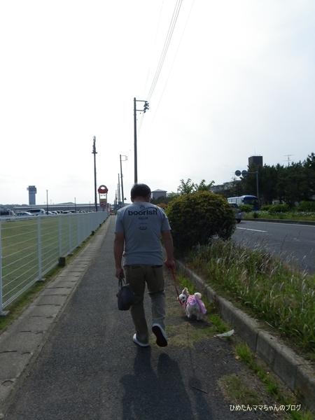 2013 大洗散歩♪ 015
