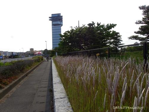 2013 大洗散歩♪ 016