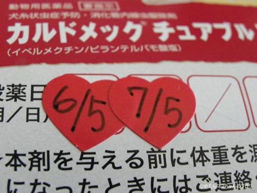 2013 ひめの日常(7月) 030