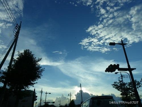 ひめの日常(9月)_0053