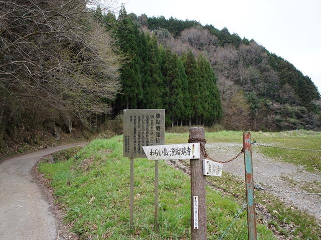 20130331KasagiS002s