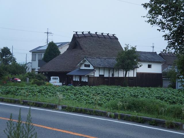 20130727SasayamaS002s