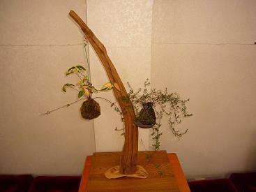 花台-つるし