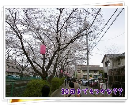 2013032401.jpg