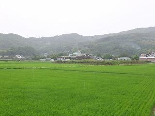 sumoto10.jpg