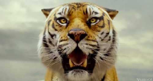 life-of-pi-trailer-tiger (800x425)