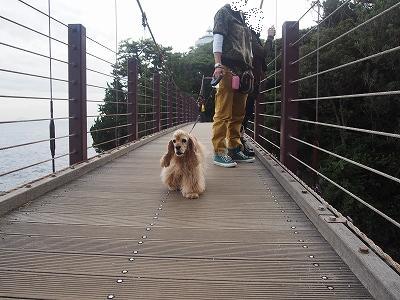 s-門脇吊り橋