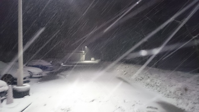 豪雪地帯なう