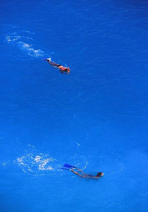 06泳ぐ2001