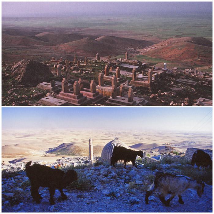02墓1993山羊2001