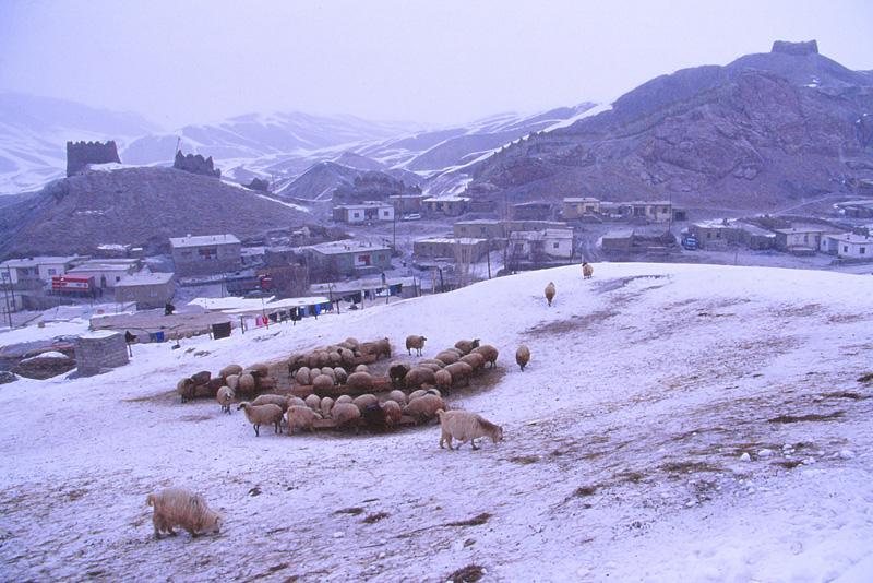 09雪の中2005