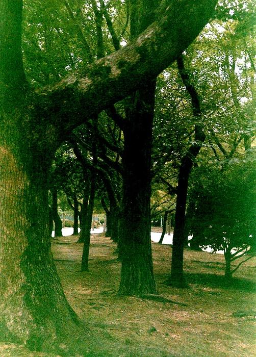 NUPC022.jpg