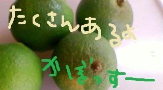 kabosu.jpg