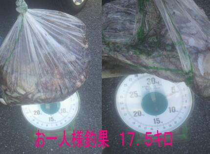 11_20120929134116.jpg