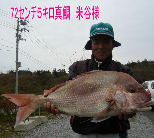 21_20121112110247.jpg
