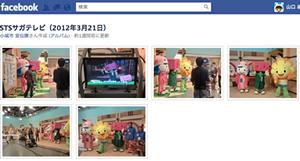 120330_facebook