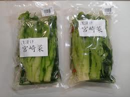 浅漬け宮崎菜