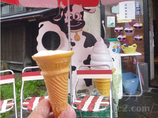ハコダテソフトハウス函館ソフトクリーム通り013