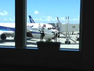 飛行機  沖縄