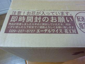 P1050201_R.jpg