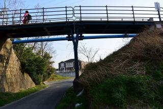 春日神社 参道橋