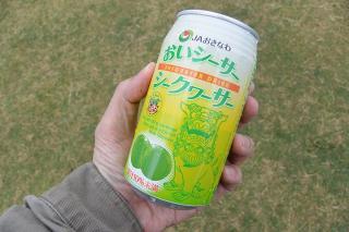 第6回 おかざき沖縄まつり