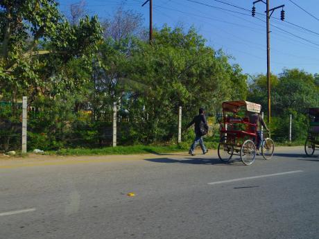 2013indiarikshaw.jpg