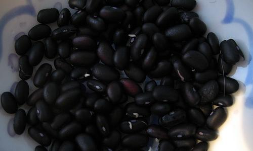 2327黒豆