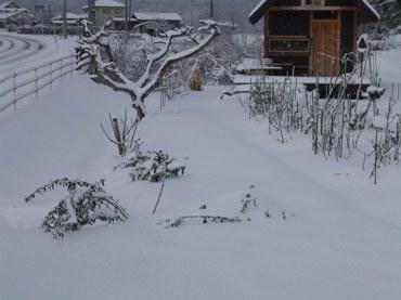 312また雪