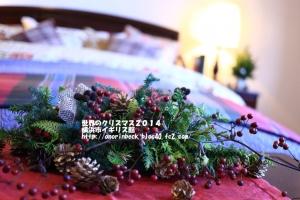 EOS6D_2014_12_07_9999_495.jpg