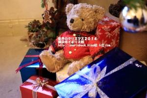 EOS6D_2014_12_07_9999_514.jpg