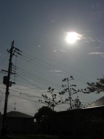 金冠日食見えた!?