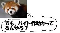 image_20130408101933.jpg