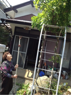 fc2blog_2012052612591500a.jpg