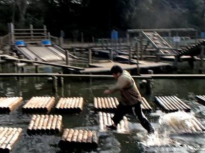 池ぼちゃ (26)