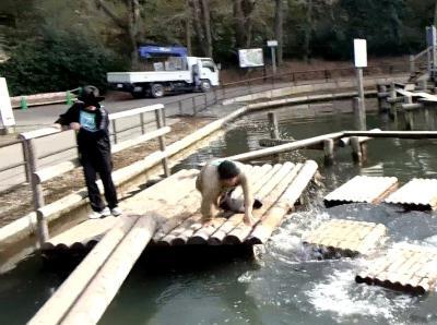 池ぼちゃ (27)