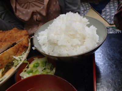 生姜焼き&ごはん (10)