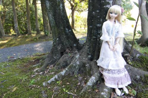 日本庭園にてその5