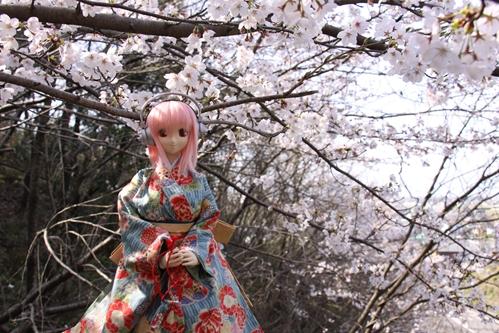桜とそに子その1