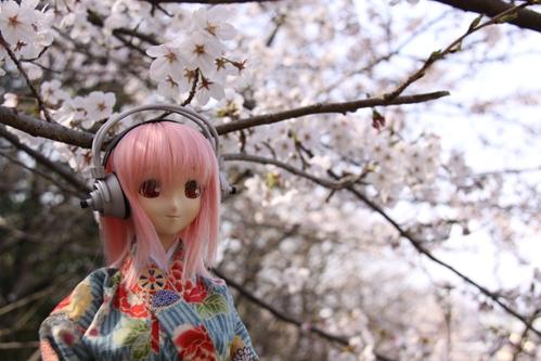 桜とそに子その2