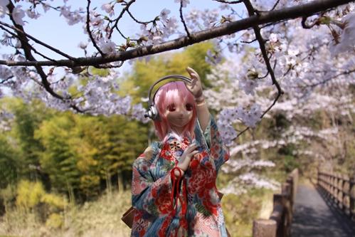 桜とそに子その3