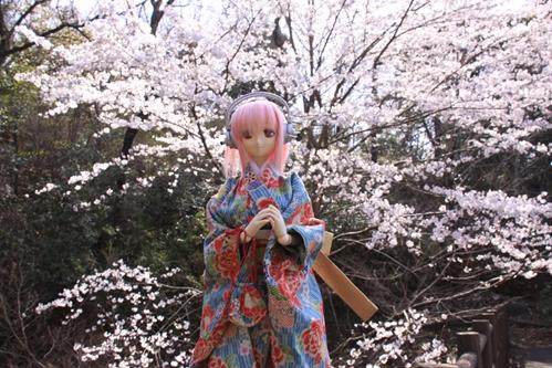 桜とそに子その5
