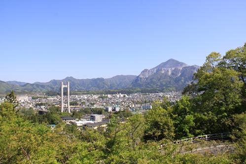 カンナと武甲山