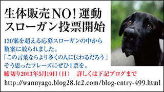 noslogantohyo2_320x180.jpg
