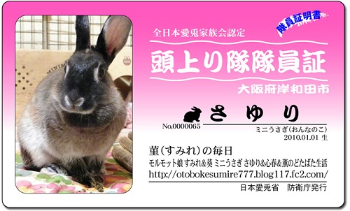 sayuri_065.jpg