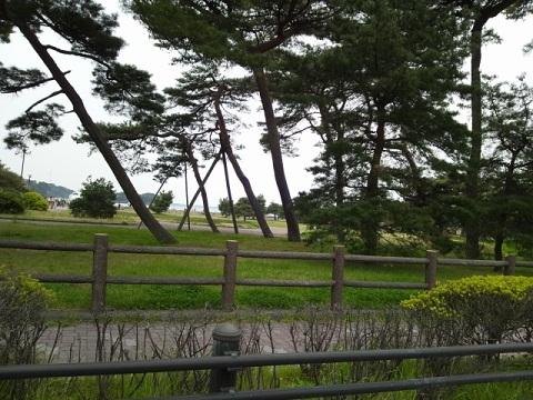 DSC_0324 松島